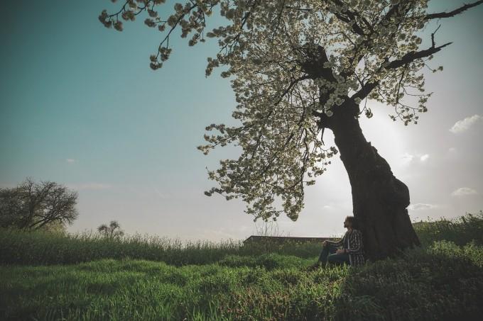 spring-604210_1280 (1)