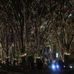 2016仙台光のページェントの期間・点灯時間・ウインク・場所・ホテル