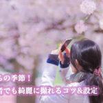桜写真撮り方|一眼レフ構図、おすすめ設定大公開!初心者でも上手に撮れるコツ!