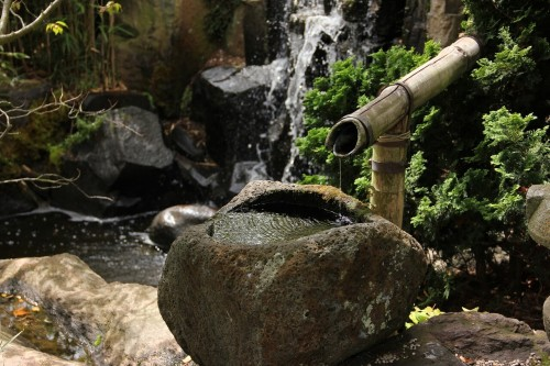 japanese-garden-437289_1280 (1)