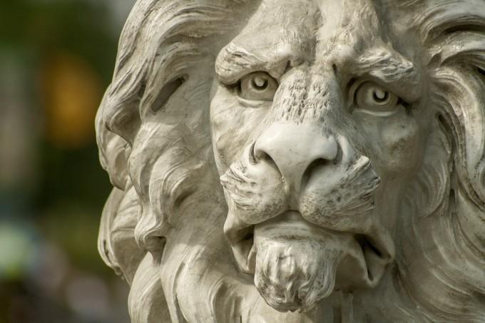 lion-671193_1280